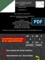 EXPO BIOQUIM EQUIPO 5.pptx