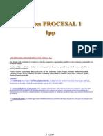 AB_1pp Procesal civil_12-13.docx