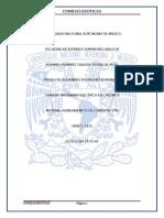 unam.pdf