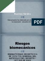 RIESGOS BIOMECANICOS arrelado.pptx