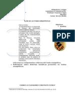 Guía N_5. Lectura ensayística G. Salazar. 2014(2).doc