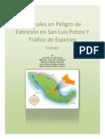 ANIMALES EN PELIGRO DE EXTINCIÓN EN.docx