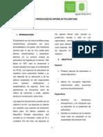 informe ESPUMA para entregar.docx