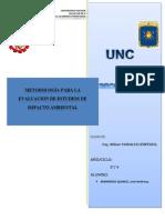 metodologia de evaluacion EIAs.docx