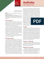 1_Andiroba.pdf