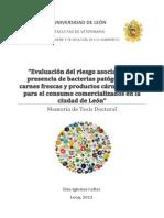 tesis_795dbb.pdf