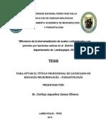 TESIS BIODEGRADACION PETROLEO.docx