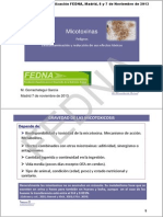 FEDNA 2013 Micotoxinas-M Gorrachategui.pdf