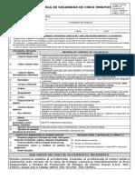 F-012 B (Charla_Cinco_Minutos_Contratistas)-1 CORREGIDO.DOC
