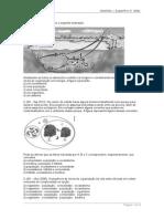 QUESTAO_RELACOES_ECOLOGICAS(1).doc