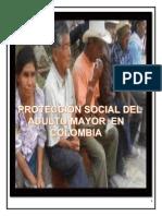 Protección_ Social_ Adulto_ Mayor.pdf