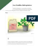 Cómo cultivar frutillas hidropónicas.docx
