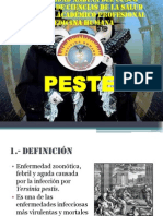 PESTE 1.pptx