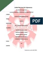 CAIDAS LISTO.docx