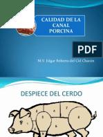 calidad_de_la_canal_porcina[1].ppt