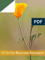 Photonaturalist 13tips Wildflowers