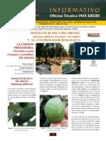 mosca blanca del olivo.pdf