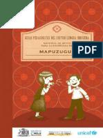 mapuche.pdf