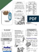 Leaflet Diabetes Militus.docx