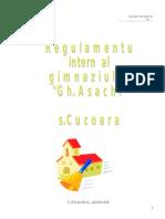 0_regulamentul_nostru_2009.doc