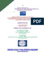 Tata Indicom Report.doc