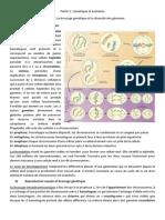 Partie 1, chapitre 1, Le brassage génétique et la diversité des génomes.docx