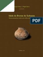PavonSoldevila_DuqueEspino Coimbra 2014.pdf