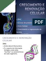 DNA e Síntese Proteica.pdf
