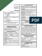 Contrato de Transporte para organigrama.docx