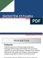 EKOSISTEM ESTUARIA.pptx