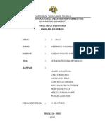 Informe nutricional-metabolico.docx