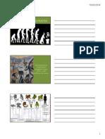 evoluçãohumana [Modo de Compatibilidade].pdf