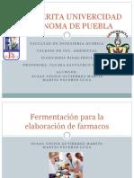 Proceso de fermentación para la obtención de farmacos.pptx