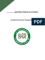 Pautas de Seguridad e Higiene en el trabajo.pdf