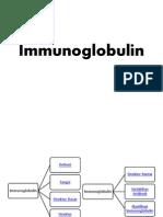 (2) Immunoglobulin Ppt