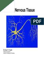 Nervous Tissue Lecture1