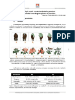 INTA_Germoplasma_Manzana.pdf