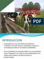 INSTALACIONES GANADERAS.pdf