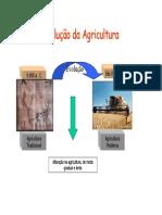 agriculturamoderna.pdf