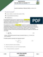 PRACTICO Nº4 - FUNCION Y.docx