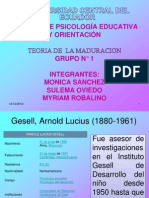 TEORIA DE LA MADURACION  GRUPO 1.ppt