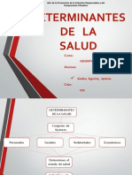 DETERMINANTES DE LA SALUD EXPOSICION.pptx