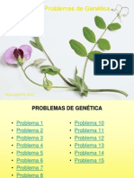 15_problemas.ppt
