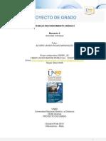 Paso 8, 9 y 10 Faber_Baron.docx