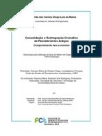 Consolidação e Reintegração Cromática  de Revestimentos Antigos Comportamento face a cloretos