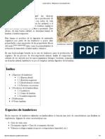 Lumbricultura .pdf