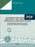 1371493975_Manual LIRAA 2013.pdf