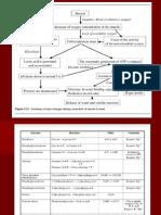 RIGOR MORTIS Y CAMBIOS POSTMORTEM.pdf