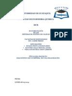 PROYECTO_FIERRO.docx