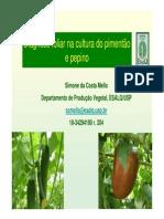 palestra_15_simone.pdf